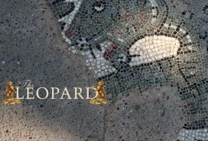 Leopard-1.1
